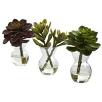 Nearly Natural 5.5-Inch Succulent Arrangements (Set of 3)