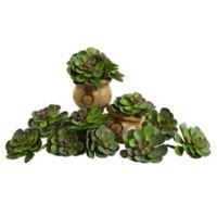 Nearly Natural 6-Inch Echeveria Succulent Arrangements (Set of 12)