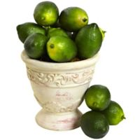 Nearly Natural Artificial Limes (Set of 12)