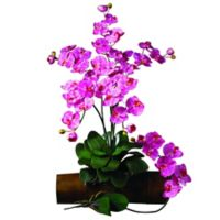 Nearly Natural 31.5-Inch Phalaenopsis Orchid Stem in Dark Pink (Set of 12)