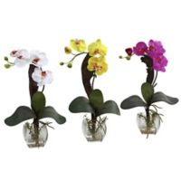 Nearly Natural 16-Inch Artificial Mini Phalaenopsis Orchid with Decorative Vase (Set of 3)