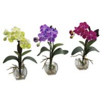 Nearly Natural 15-Inch Mini Vanda Orchid Arrangement (Set of 3)