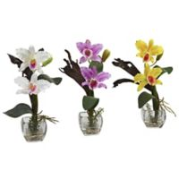Nearly Natural 15-Inch Artificial Mini Cattleya Orchid with Decorative Vase (Set of 3)