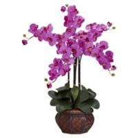 Nearly Natural Artificial Purple Phalaenopsis Orchid Arrangement in Vase