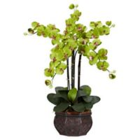 Nearly Natural Artificial Green Phalaenopsis Orchid Arrangement in Vase