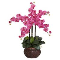 Nearly Natural Artificial Dark Pink Phalaenopsis Orchid Arrangement in Vase