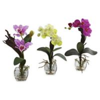 Nearly Natural Mix Orchid Floral Arrangements with Cube Vases in Pink (Set of 3)