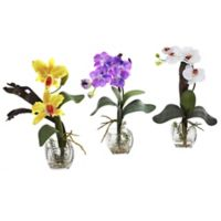 Nearly Natural Artificial Mixed Orchids in Vases (Set of 3)