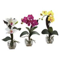 Nearly Natural Mix Orchid Floral Arrangements with Cube Vases in White (Set of 3)