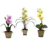 Nearly Natural Artificial Mixed Orchids in Pots (Set of 3)