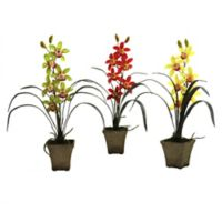 Nearly Natural Artificial Cymbidium Orchids in Vases (Set of 3)