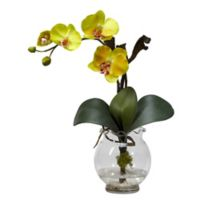 Nearly Natural Phalaenopsis Silk Flower with Fluted Vase