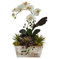 Nearly Natural Orchid & Succulent Garden Floral Arrangement with Planter