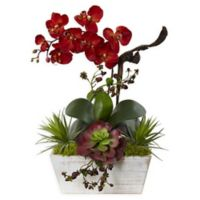 Nearly Natural Artificial Autumn Orchid & Succulent Garden in Planter