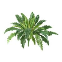 Nearly Natural 24-Inch Artificial Marginatum Plants (Set of 3)