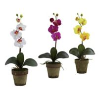 Nearly Natural 19-Inch Potted Phalaenopsis Artificial Plants (Set of 3)