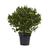 Nearly Natural 28-Inch Artificial Peperomia Plant with Black Planter