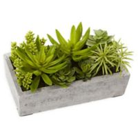 Nearly Natural 6.5-Inch Succulent Garden with Concrete Planter