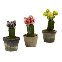 Nearly Natural Colorful Cactus Artificial Plants (Set of 3)