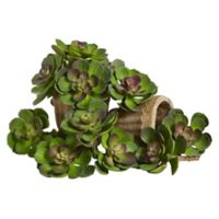 Nearly Natural 5-Inch Echeveria Artificial Succulent Plants in Green (Set of 12)