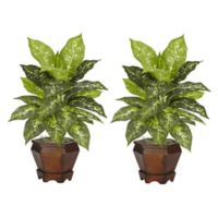 Nearly Natural 20.5-Inch Variegated Dieffenbachia Artificial Plants with Wood Vase (Set of 2)