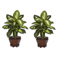 Nearly Natural 20.5-Inch Dieffenbachia Artificial Plants with Wood Vase (Set of 2)