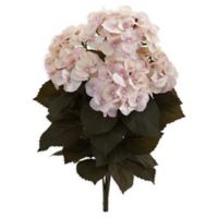 Nearly Natural 20-Inch Fall Hydrangea Artificial Plants (Set of 2)