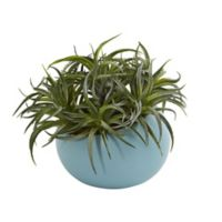 Nearly Natural 9-Inch Succulent Artificial Plant with Blue Ceramic Planter