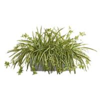 Nearly Natural Artificial Spider Plant in Planter