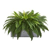 Nearly Natural 30-Inch Artificial Boston Fern in Planter