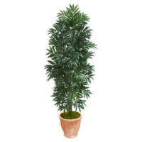 Nearly Natural 5-Foot Bamboo Palm Tree with Terra Cotta Planter