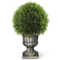 National Tree Company® 27-Inch Artificial Juniper Ball Topiary Ball in Planter