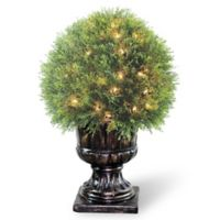 National Tree Company® 27-Inch Artificial Pre-Lit Juniper Topiary Ball in Planter