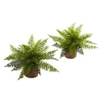 Nearly Natural 15-Inch Artificial Ruffle Fern Bushes with Burlap Base (Set of 2)