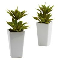 Nearly Natural Double Mini Agaves with Vases (Set of 2)