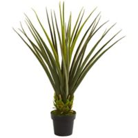 Nearly Natural 3.5-Foot Artificial Pandanus Plant
