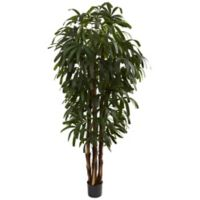 Nearly Natural 6-Foot Raphis Artificial Palm Tree