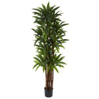 Nearly Natural 6.5-Inch Dracaena Artificial Tree