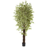 Nearly Natural 8.5-Foot Artificial Variegated Ficus Tree