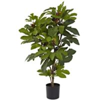 Nearly Natural 32-Inch Artificial Fig Tree