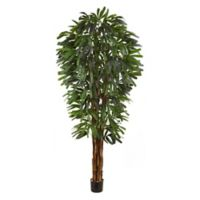 Nearly Natural 7-Foot Artificial Raphis Palm Tree