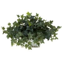 Nearly Natural 14-Inch Ivy Artificial Plant with White Washed Plater