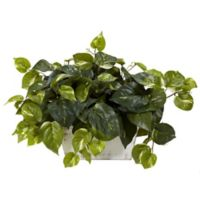 Nearly Natural 14-Inch Pothos Artificial Plant with White Washed Planter
