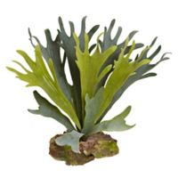 Nearly Natural Artificial Staghorn Plants (Set of 6)