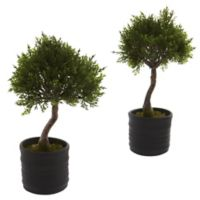 Nearly Natural 11.5-Inch Artificial Cedar Bonsai Plant with Black Planter (Set of 2)