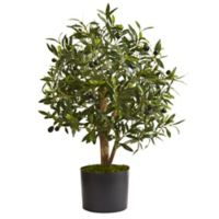 Nearly Natural 29-Inch Artificial Olive Tree with Black Planter