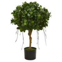 Nearly Natural 2.5-Foot Artificial Panda Ficus Tree with Black Planter