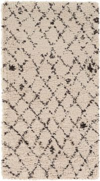 Surya Wilder 2' x 3'7 Shag Accent Rug in Cream/Dark Brown