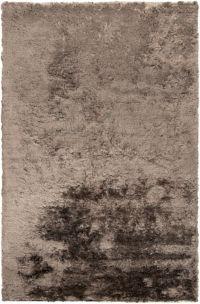 Surya Jasper 5' x 8' Shag Area Rug in Grey
