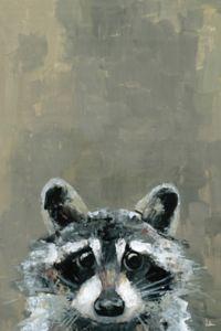 Marmont Hill Look Raccoon 12-Inch x 8-Inch Canvas Wall Art